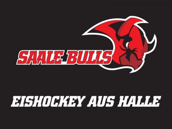 Saale Bulls vs EG Diez-Limburg - Sitzplatz